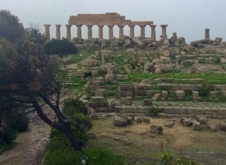 Il parco archeologico di Selinunte scommette sull'agricoltura e coltiva i grani antichi.